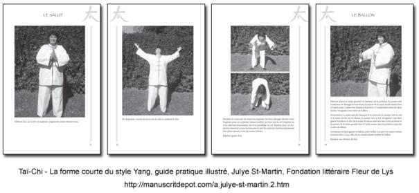 c.julye-st-martin.2.montage