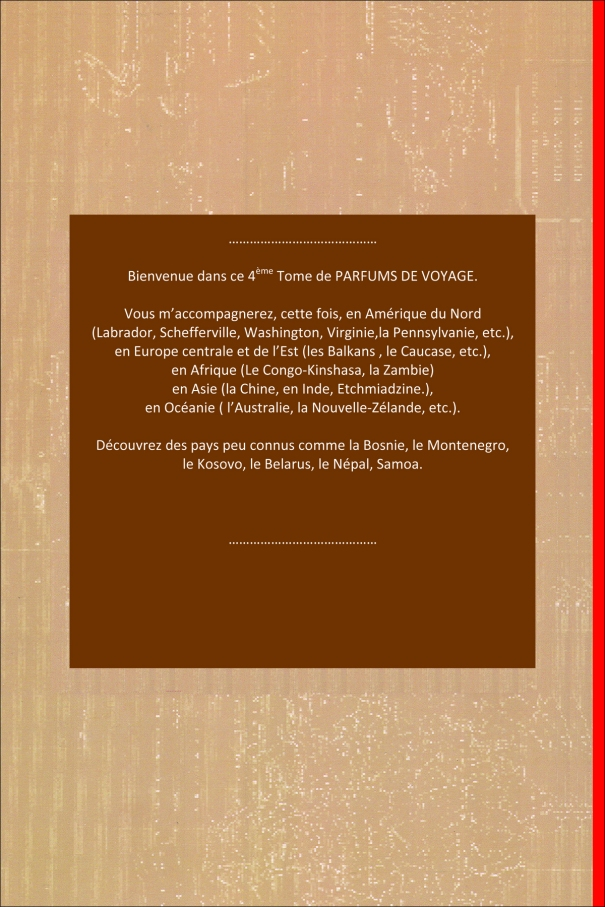 Microsoft Word - n.michel-lacroix.1.doc